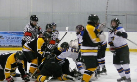 Ref Attacked, Mounties Called to Break Up Hockey Brawl