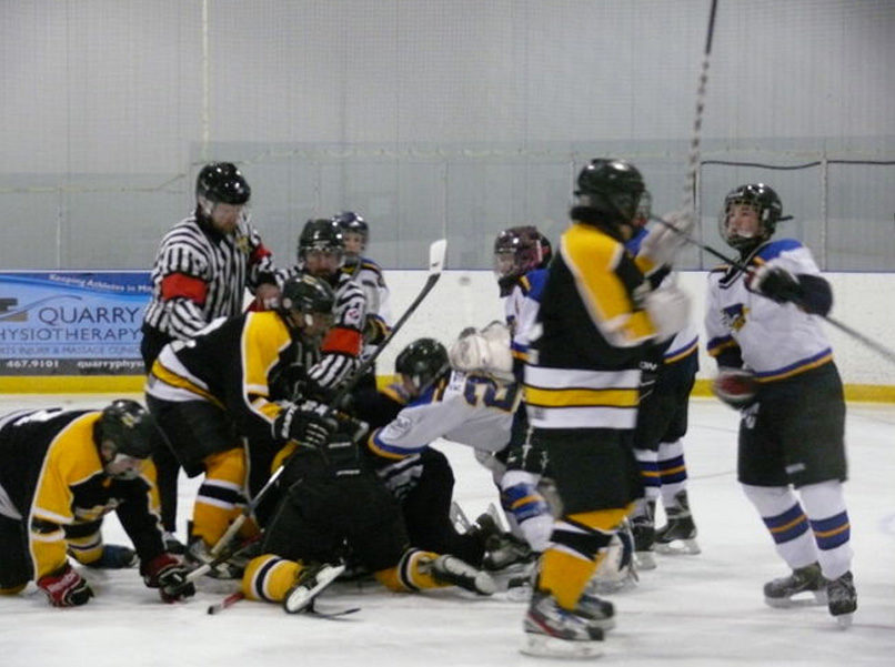 Ref Attacked, Mounties Called to Break Up Hockey Brawl