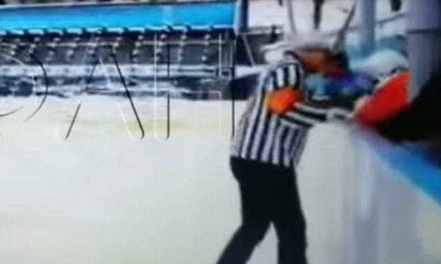 Police Investigating Russian Ref's Altercation with 11-Year-Old Player
